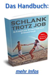 Handbuch Fabian Prell mehr Infos