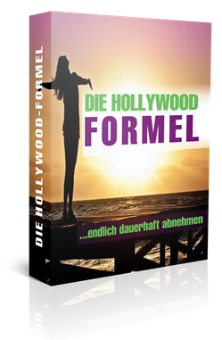 Hollywood Formel Buch